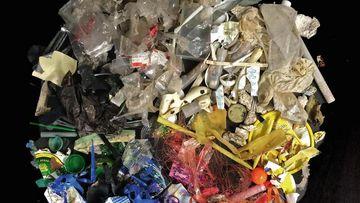 Beispiele für Plastikfunde aus deutschen Binnengewässer