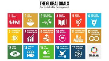 Übersicht: Die globalen Ziele für nachhaltige Entwicklung © United Nations/global¬goals.org