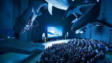 Blick in den Kinosaal der International Ocean Film Tour