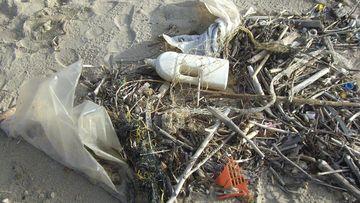 Ein Foto von Plastikmüll am Strand.