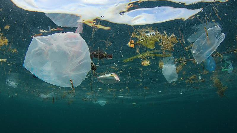 Plastik Weltmeere