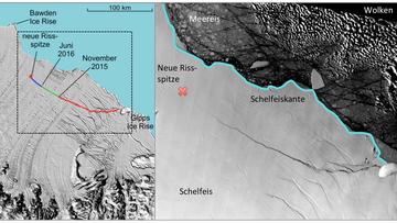 Am Larsen C-Schelfeis in der Antarktis beginnt sich ein riesiger Eisberg vom Schelfeis abzulösen. Wird die Ablösung weitere Folgen und eventuell Auswirkungen auf den Meeresspiegel haben?