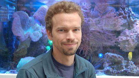 Foto von Dr. Sebastian Ferse, Leibniz-Zentrum für Marine Tropenökologie