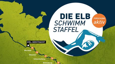 Elbschwimmstaffel ist ein einzigartiges Sport- und Forschungsevent